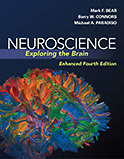 Image of the book cover for 'Neuroscience'