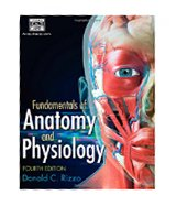 Image of the book cover for 'Fundamentals of Anatomy and Physiology'